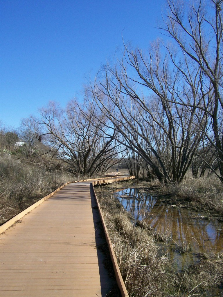 Salado Creek Greenway Mcallister Park To Lady Bird