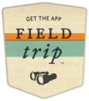 Field Trip by Google