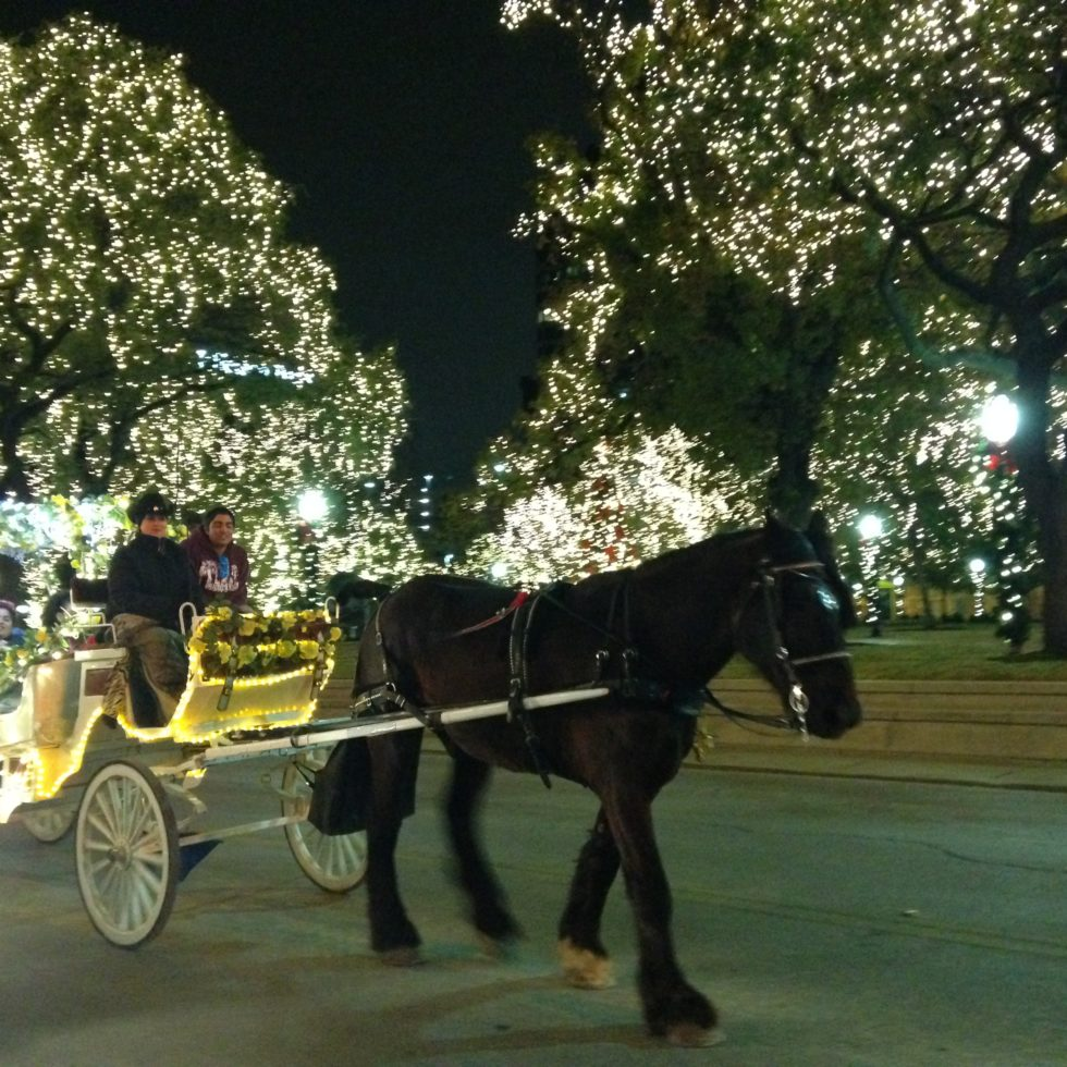 Photo of a horse-drawn carriage making its way through the wintertime twinkle lights in San Antonio, Texas.